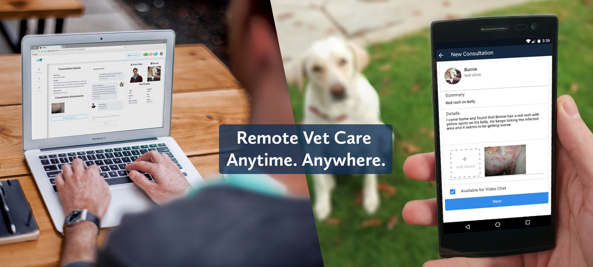 Remote Pet Care With TeleVet - Creedmoor Road Animal Hospital